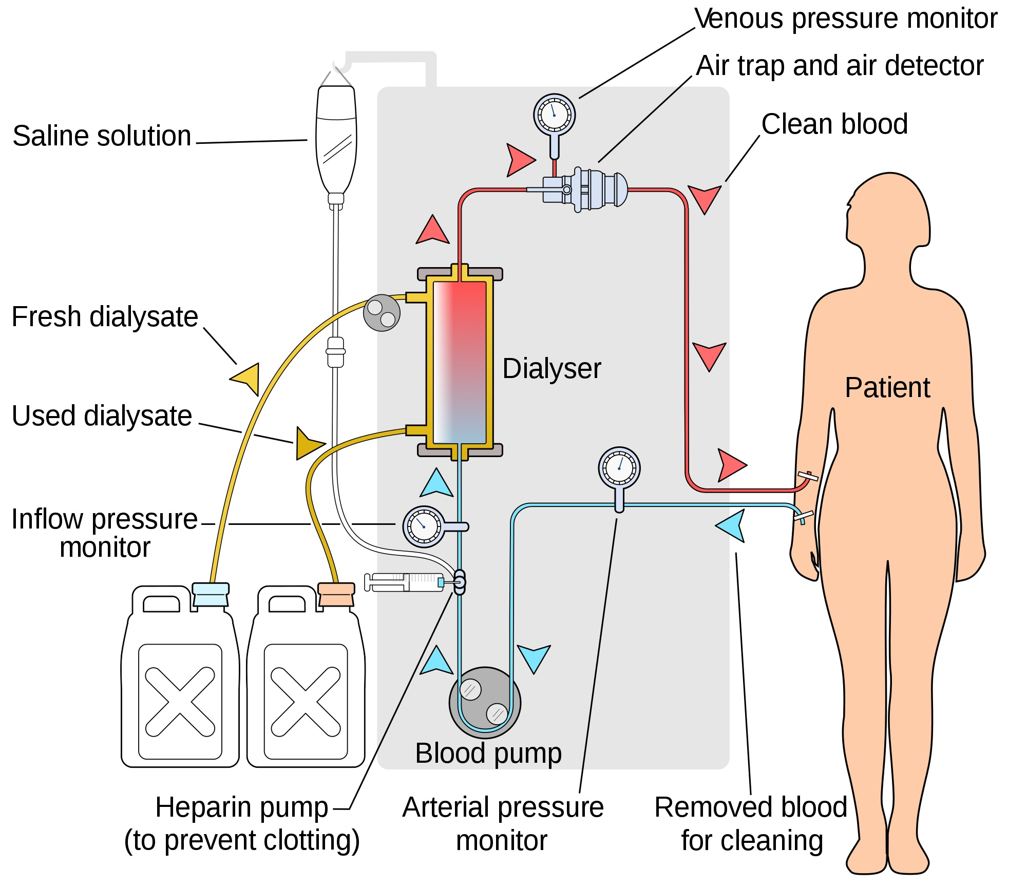 Online education infection prevention in hemodialysis settings 1betcityfo Images